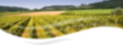 GTC;GTB;Modbus;Bacnet;Dry;Condenseurs;Refroidisseurs;VMF;Chauffer;Climatiser;AERMEC;Alsace;Moselle;Meurthe-et-Moselle;Vosges;Meuse;Marne,Ardennes;Champagne;Belfort;France Clim;Lorraine;Alsace;Champagne-Ardennes,Pompe a Chaleur 57,Pompe a Chaleur 54,PAC