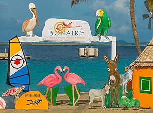 about-bonaire-header.jpg