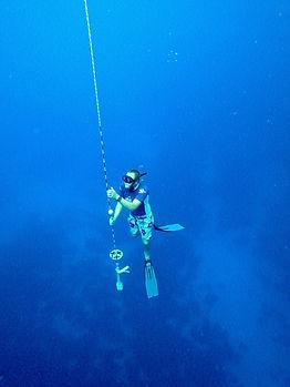Freedive 4.jpg