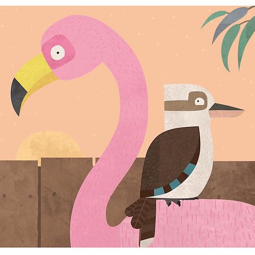 Kookaburra and Flamingo