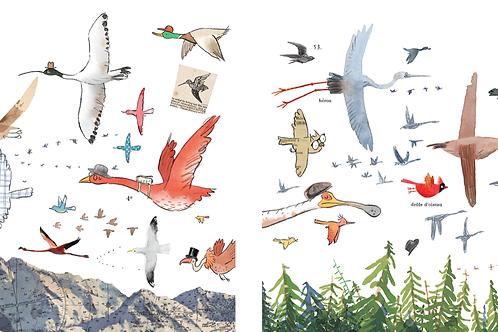 Birds fly north, birds fly south