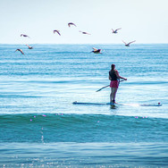 stand up paddle boarding yoga retreat.jp