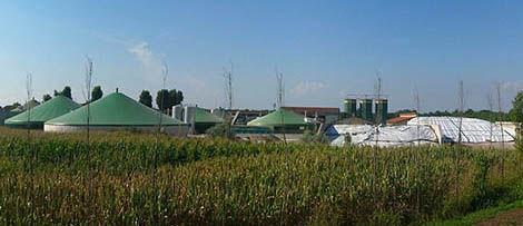 Bio-energy facility