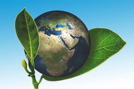 Ecology and world metaphor