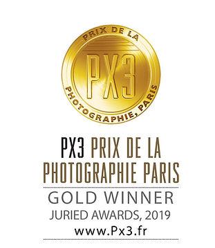 PX3-2019-Gold.jfif