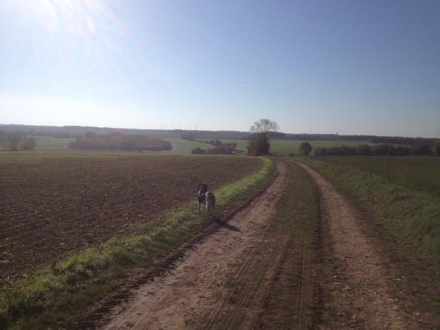 walk to village