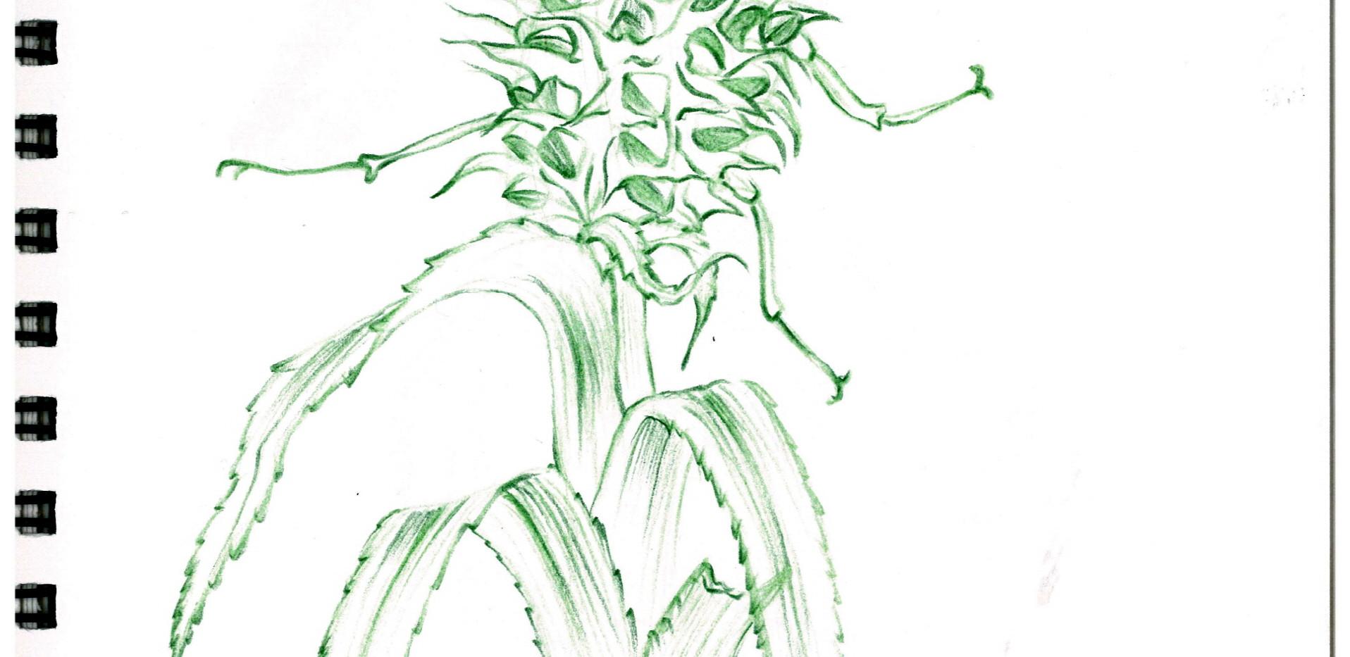 김영래, <사슴파인애플>, drawing