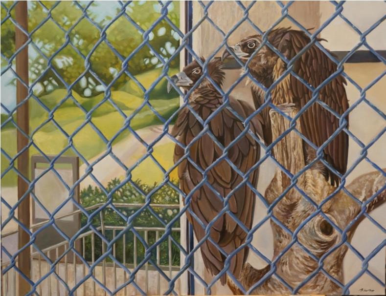 이재규, <달성공원>, 90.9*65.1cm, Oil on canvas, 2017     이재규는 동물원을 두고 보호차원이나 교육적 목적을 말하는 측과 동물들의 자유를 억압하고 자연의 섭리를 거스른다는 측의 의견에 대해 자신의 의견을 보이지 않는다. 그는 양측의 조율될 수 없는 입장 차이를 동물원의 동물들을 통해 보여준다. 이러한 그의 작업은 비단 동물원에 한정되는 것이 아닌, 복잡한 현대사회의 여러 가지 측면으로 확장된다.