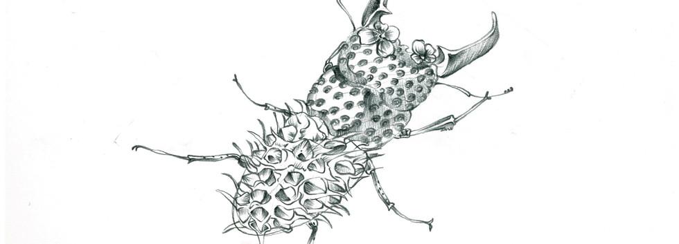 김영래, <사슴파인애플(2)>, drawing