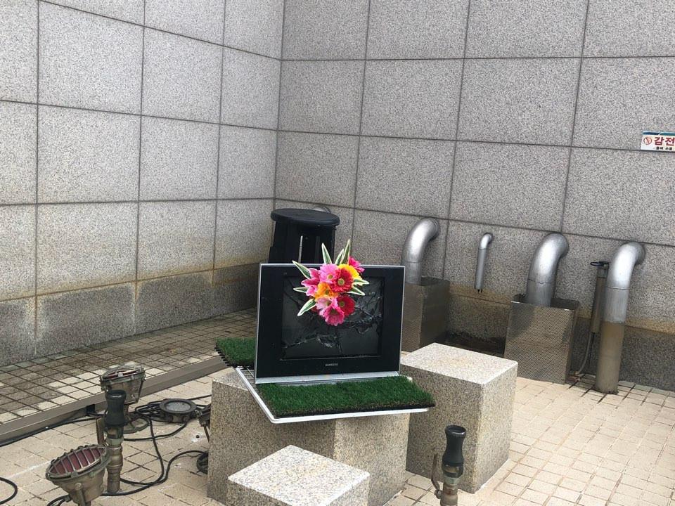 TheThe(노현지, 이수아), <피어나는 TV>, mixed media, variable installation, 2018
