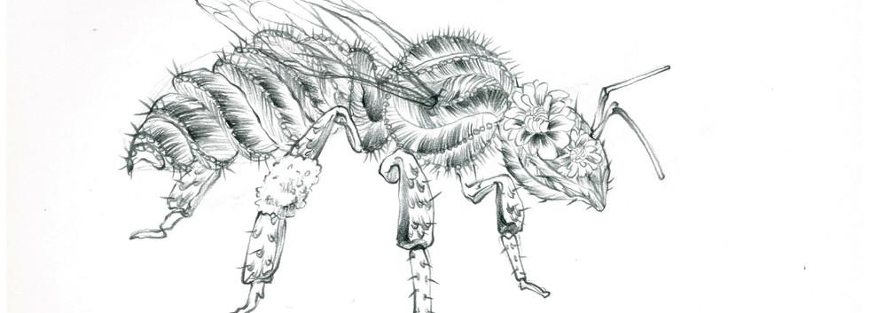 김영래, <분자벌>, drawing