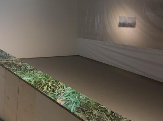 강민영 installation view