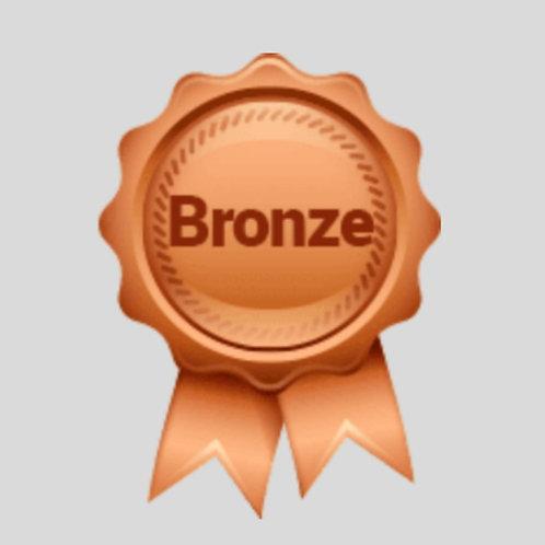 Bronze ( Self-Starter) Business Profile Builder Program