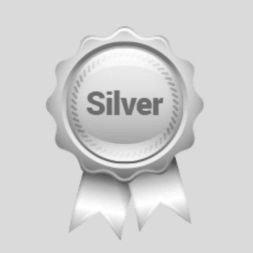 Silver Package 30 Days - Business Profile Builder Program