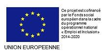 logo-FSE-europe EDM.jpg