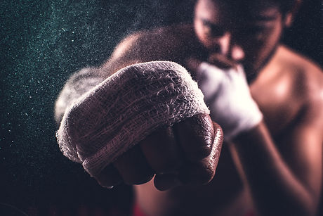 selective-focus-of-a-boxer-s-fist-356211