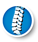 Spine copy.png