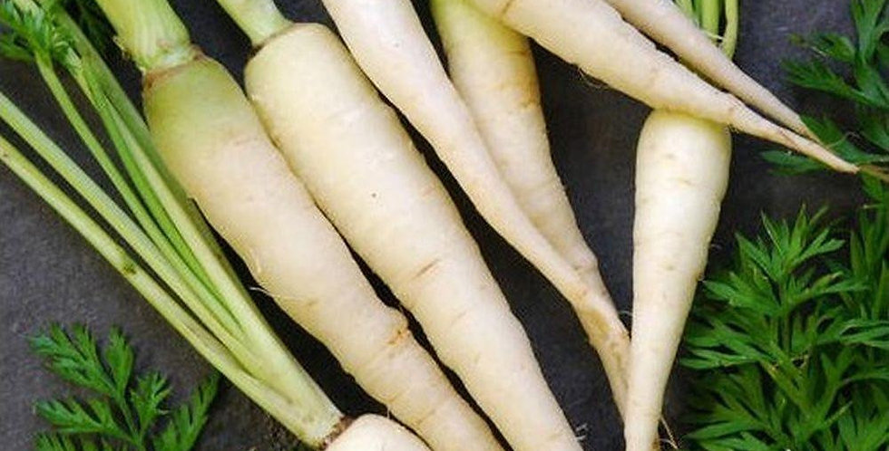 White Carrots-bunch