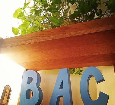 Boise Acupuncture Co-op with a healing crystal, healthy plant and warm sunlight