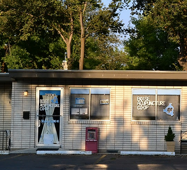 front of a building with Boise Acupuncture Co-op on the front door and trees in the backgound