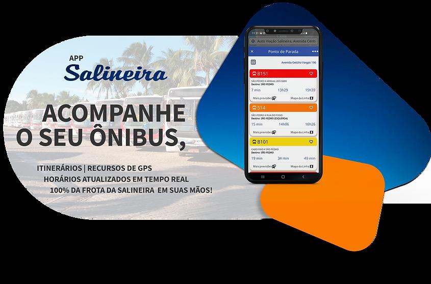 APP SALINEIRA.png