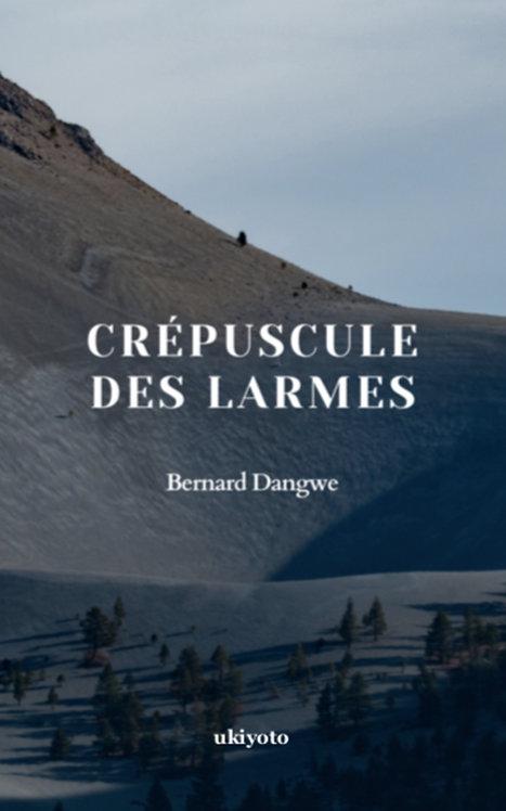 CREPUSCULE DES LARMES - Paperback
