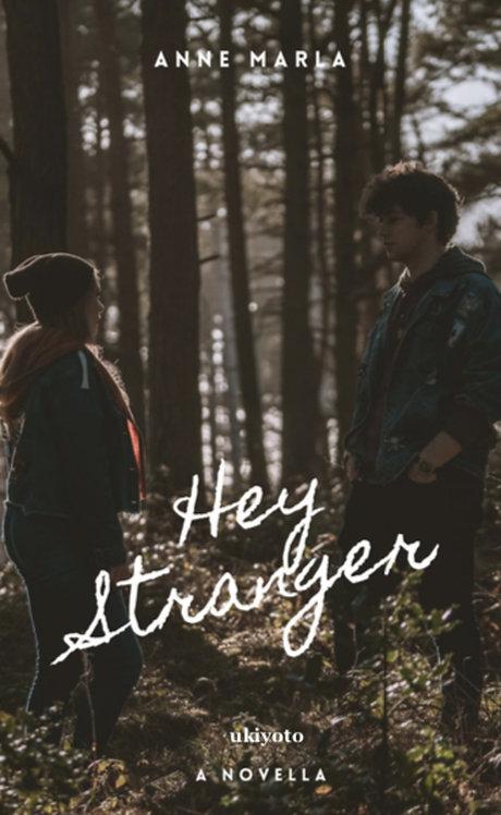 Hey Stranger - Paperback