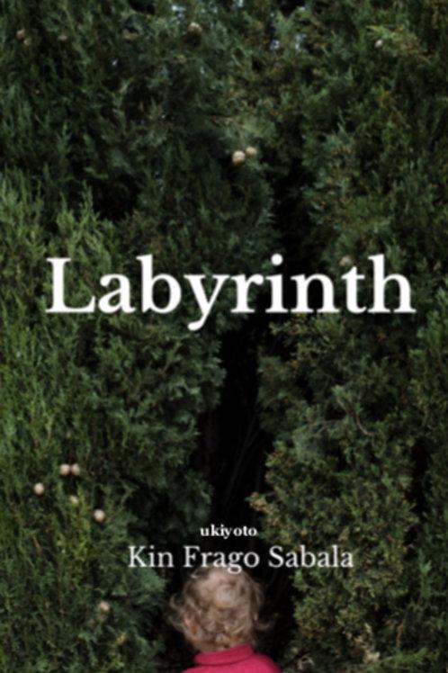 Labyrinth - Flipbook