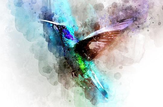 bird-3137050_1920.jpg