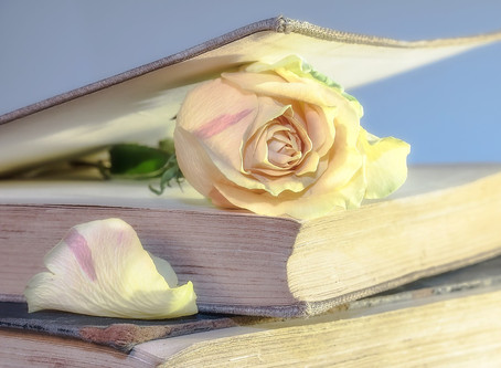 What Makes Readers Love a Book?