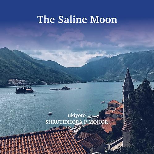 The Saline Moon