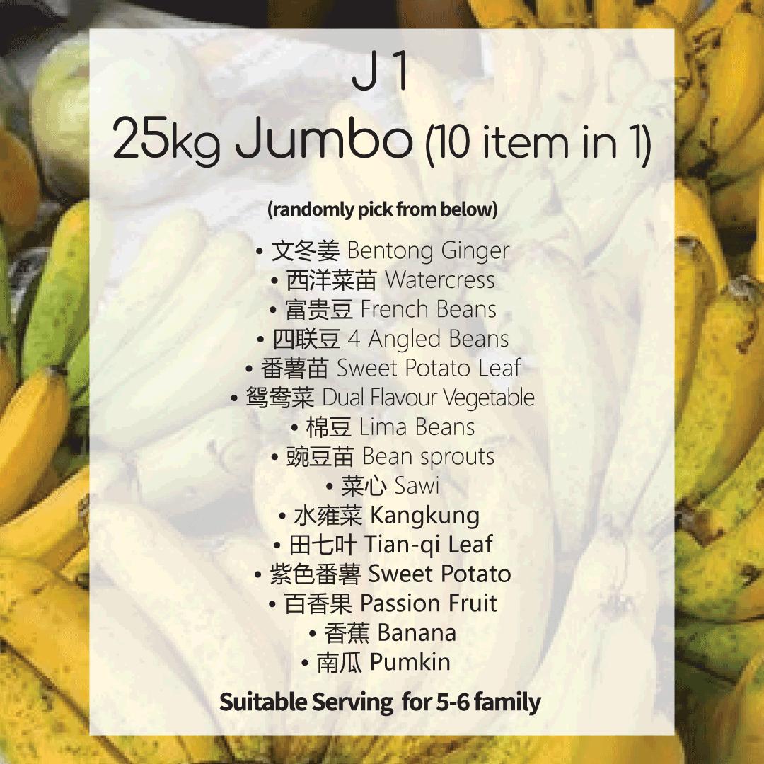 J1 Package