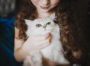 白猫を愛撫する女性