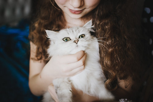 Basic Animal Communication Private Lesson / 90 Minutes