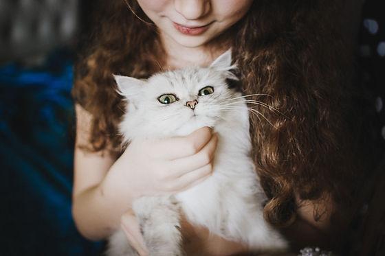 흰 고양이 듬