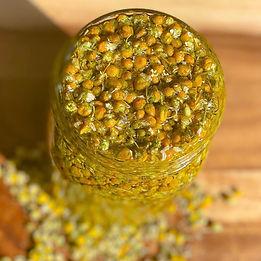 chamomile pic.jpeg