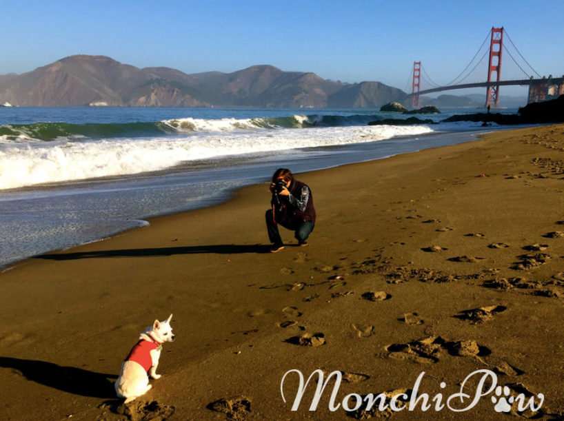 Monchi's Photo Session by Diaz-Flores Photography