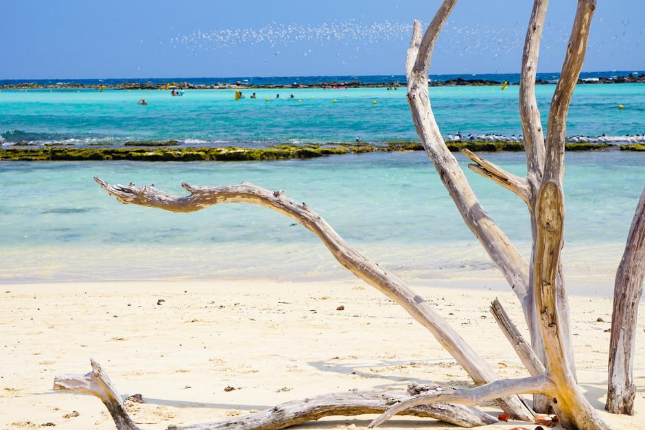 Getting Lost in Aruba: A Travel Guide