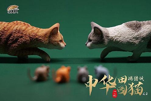 JXK062 - 1/6 Felis Catus 2.0