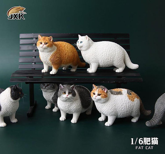 JXK064 - 1/6 Fat Cat