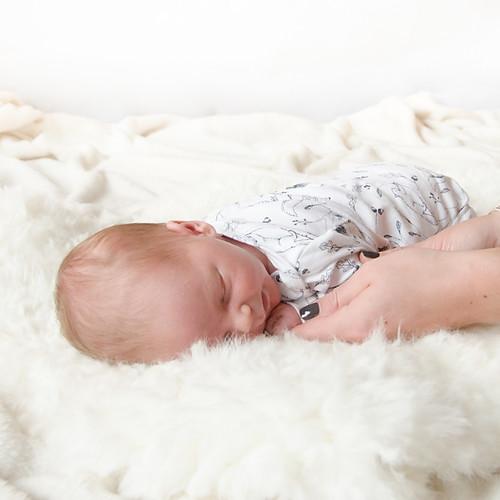 Baby Milo