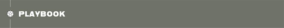 AustinFC-Scroll-10.png
