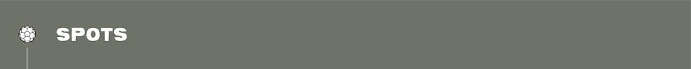 AustinFC-Scroll-02.png