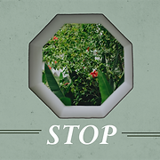 Stop - Square.png