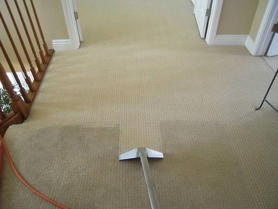 Carpet Clean 2.jpg