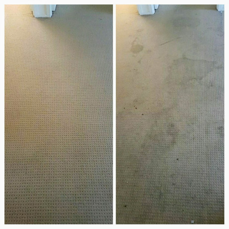 Before and after carpet clean.jpg