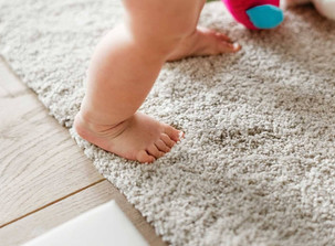 Kill Bacteria and Viruses With Professional Carpet & Upholstery Cleaning