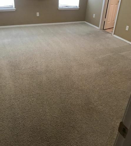 Clean Carpet.jpg