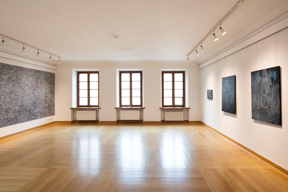 Luka Rayski, installation view