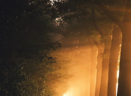 A Step Four and Step Five Reflection: Shedding Light on the Darkest Places in Our Soul